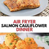 air fryer salmon with a homemade blackening seasoning rub